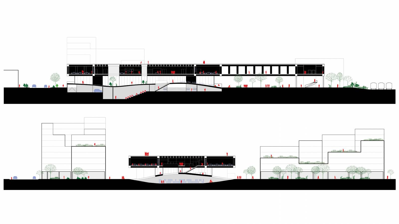 SECTIONS - NEW AARCH – FLYING CARPET - SPOL Architects