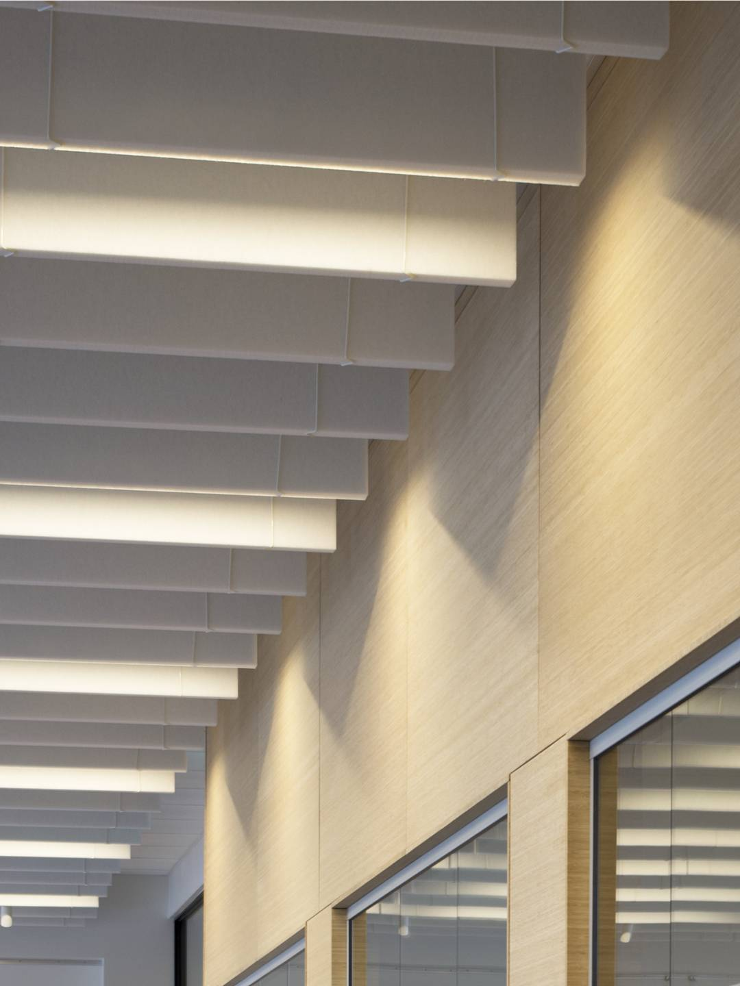 CELL OFFICE WALL WITH ACOUSTIC CEILING - Frontline Offices - SPOL Architects